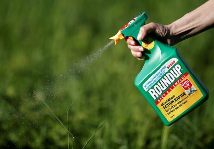 8,000 Plaintiffs Sue Monsanto Over Cancer Causing Glyphosate