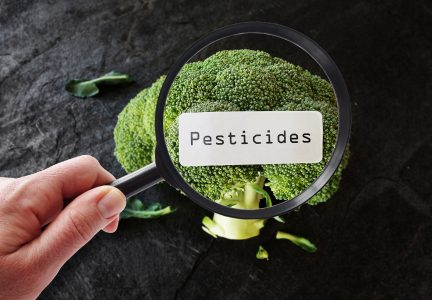 Federal Court Orders Pesticide Ban